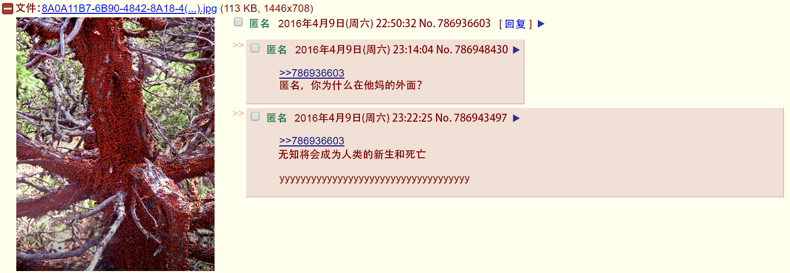 4chan-12-3.png